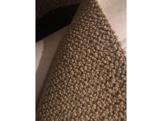 12 x 8 carpet, soft tan